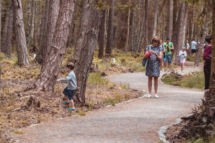 Grandmother and grandchild walking in the forest