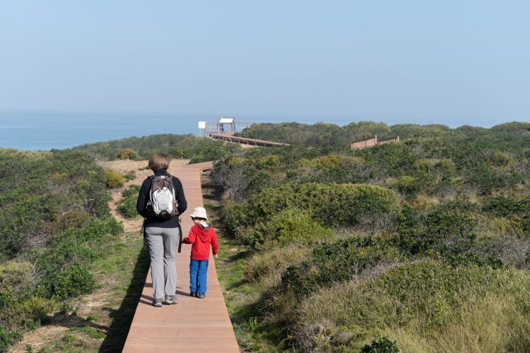 walking a wooden path in rota vicentina